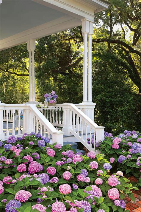 Living Gardens by 17 Dreamy Hydrangea Gardens That Are Giving Us Major