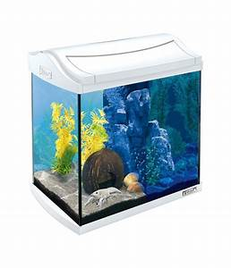 Aquarium Set Led : tetra aquaart led aquarium set 30 liter dehner ~ Watch28wear.com Haus und Dekorationen