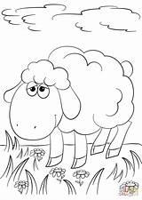 Lamb Coloring Cartoon Pages Drawing Sheep Sheet Printable Grass God Fun Dot Angels Paper Animals sketch template