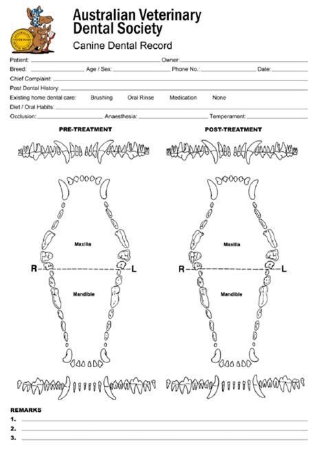 top dog dental charts      format