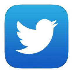Twitter Icon Download