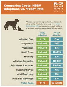 how much does it cost to deworm a cat hssv adoption experience humane society silicon valley