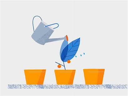 Animation Dribbble Vector Chile Motion Growing Watering