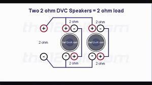 Single Coil Car Speakers Wiring Diagram