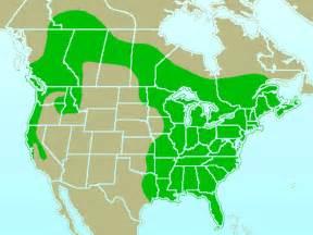 file pileated woodpecker rangemap gif wikipedia