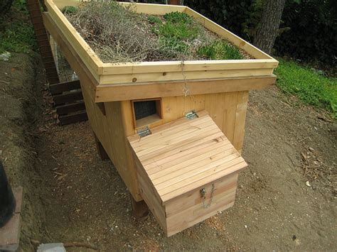 Mipsy6's Southern California Urban Chicken Coop