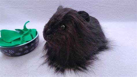 big black longhaired guinea pig plushie citrine mouse