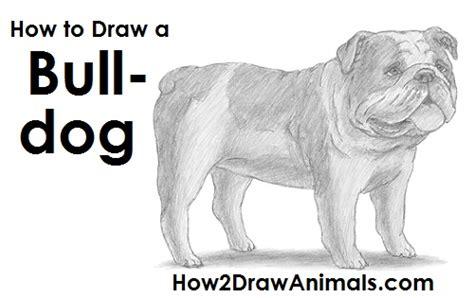 Bulldog Draw Chilangomadrid Com