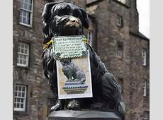 Greyfriars Bobby Out About Scotland