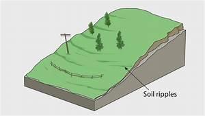 Evidence Of A Soil Creep
