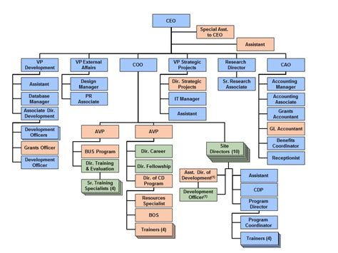 6 Best Images of COO Organizational Chart - COO ...