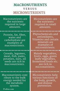 Food Chart For Type 1 Diabetes Difference Between Macronutrients And Micronutrients