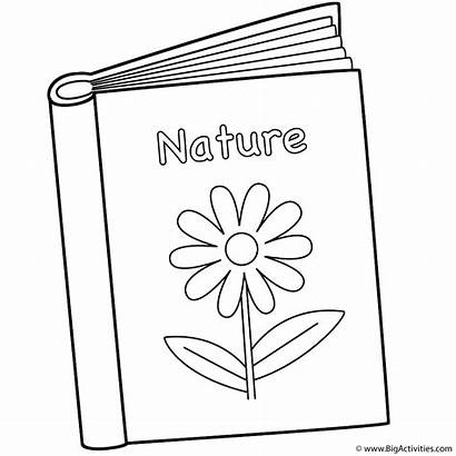 Coloring Pages Printable 100th Books Nature Bigactivities