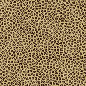 Cheetahs Cheetah Print And Background On Pinterest ~ idolza