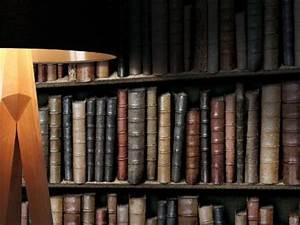Papier Peint Trompe Oeil Castorama : papier peint bibliotheque ~ Preciouscoupons.com Idées de Décoration