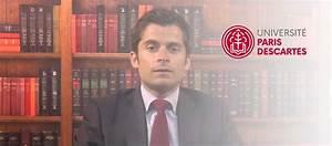 Juriste Protection Juridique : les m tiers du droit portail universitaire du droit ~ Medecine-chirurgie-esthetiques.com Avis de Voitures