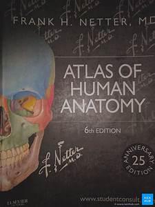 Frank Netter U0026 39 S Atlas Of Human Anatomy  Review