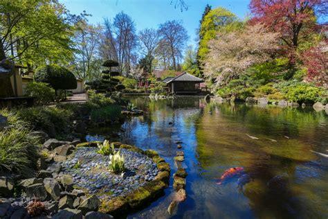 Japanischer Garten Kaiserslautern Tanabata by 15 Best Things To Do In Kaiserslautern Germany The