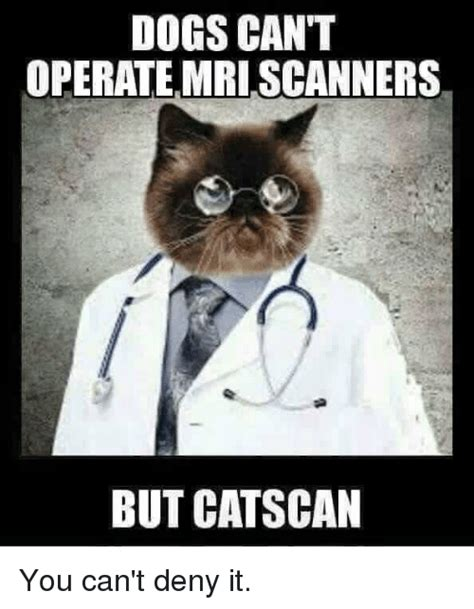 Scanners Meme - dogs can t operate mri scanners but catscan you can t deny it meme on sizzle