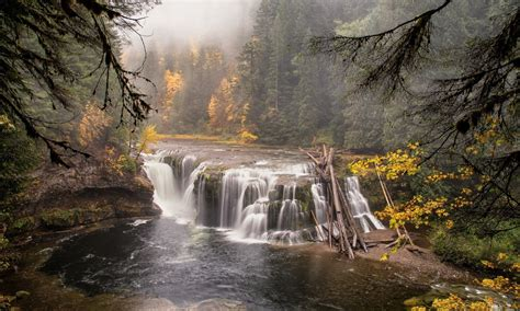 Wondrous Forest River Waterfall Wide Wallpaper 335308