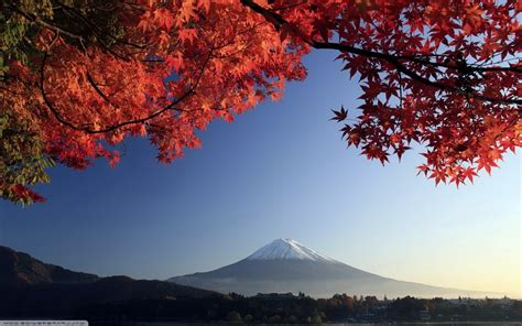 fall japan trees mountain sky mount fuji wallpapers
