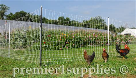how to keep chickens out of garden premier1supplies try premier s garden and poultry