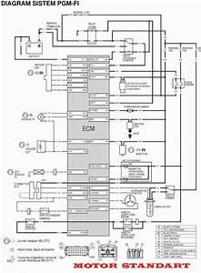 Tvs Apache Wiring Diagram Hd Dump Me Best Of