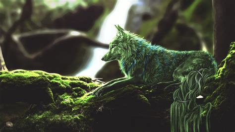green wolf  wallpapers hd wallpapers id