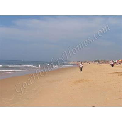 Candolim beach in Goa info