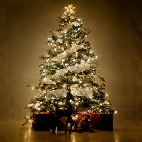 best places to get christmas ornaments tree ornaments class saturday december 22 2018 3 00 pm caro area district