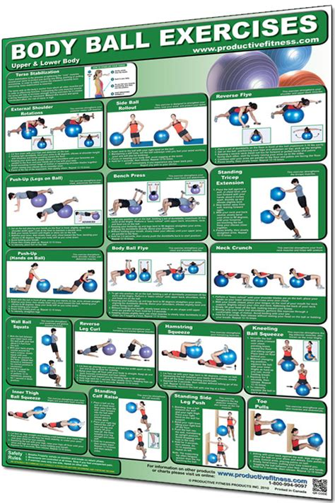 ball body exercises exercise lower poster upper fitness swiss stability posters charts balls stak