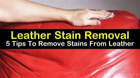 Leather Stain Removal by Leather Stain Removal 5 Tips To Remove Stains From Leather