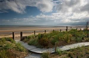 Beach Garden  Sussex - Stile Marinaro - Giardino
