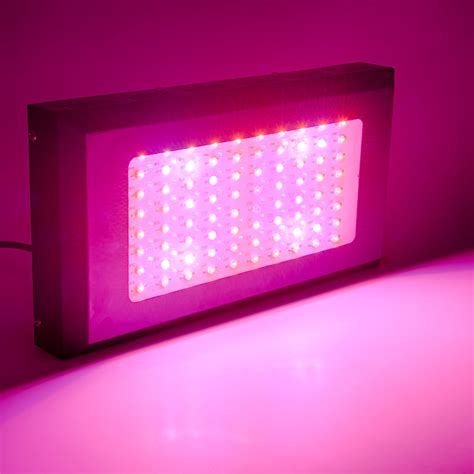 spectrum led grow light 240w equivalent