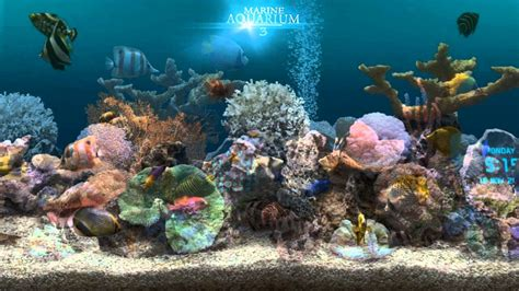 marine aquarium 3 2 for android