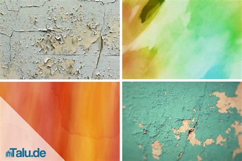 dispersionsfarbe clever entfernen und richtig entsorgen talu de