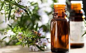 Shakespeare Was Right  Rosemary Oil Boosts Memory