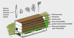 Hochbeet Aufbau Schichten : faq zu den schroth hochbeeten ~ Articles-book.com Haus und Dekorationen
