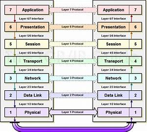 Explain All The Layers Of The Osi Reference Model With A Suitable Diagram