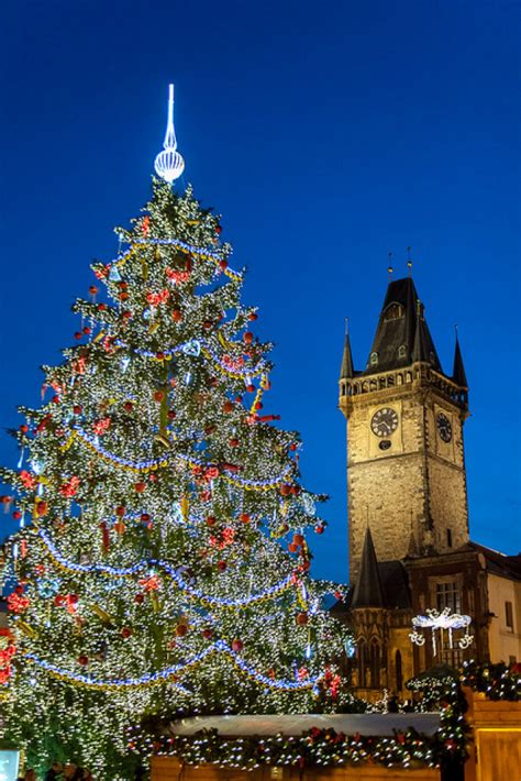 top  iconic christmas trees   roots huffpost
