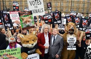 fox protesters including brian may hold rally at