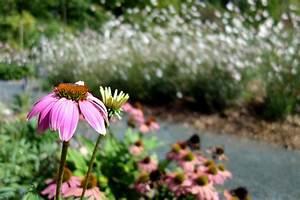 Jardin Botanique De Lyon : jardin botanique de lyon deliciouzlife ~ Farleysfitness.com Idées de Décoration