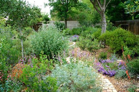 native plant garden  bakersfield