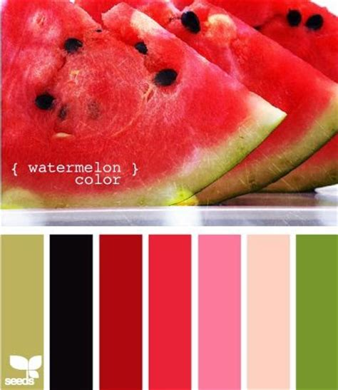 watermelon colors sting from the cas285 the colors of a watermelon
