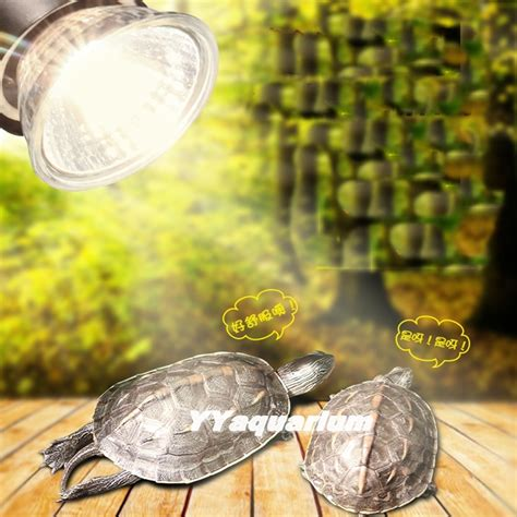 buy wholesale uva uvb light for turtles from china