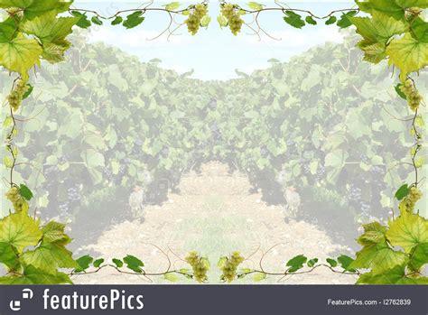 templates wine border stock illustration