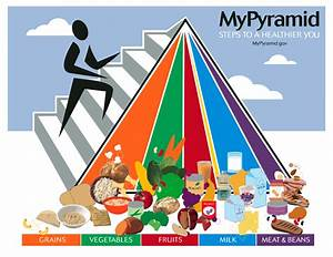 The conspiracy of the Food Pyramid - New Trends In Nutrition