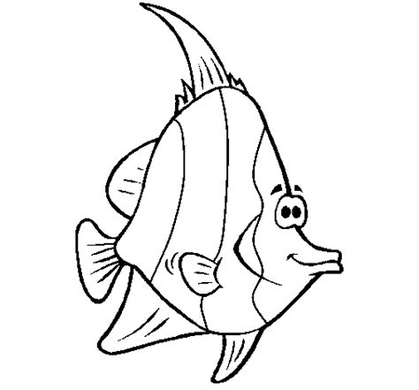 Tropical Fish Coloring Pages by Tropical Fish Coloring Page Coloringcrew