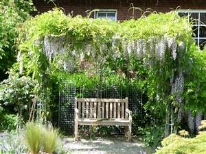 Vertikaler Garten Kaufen : vertikaler garten kaufen google suche gardening pinterest gardens ~ Watch28wear.com Haus und Dekorationen