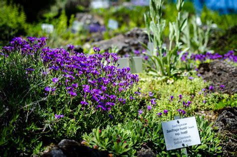 Der Garten In Wien by Der Botanische Garten Wien Eine Oase Inmitten Der Stadt